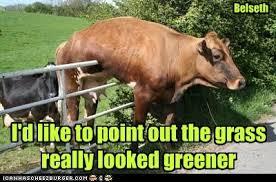 greener2